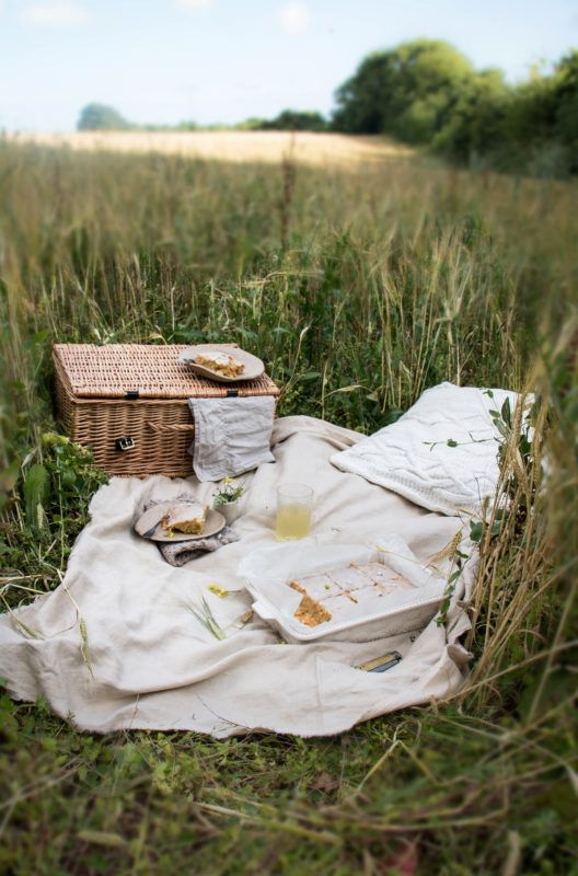 Hor sa na piknik! Ako si užiť jedlo v prírode?