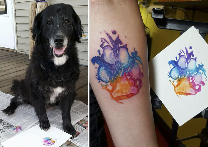 Desať prípadov, kedy pes dokázal vytvoriť to najrozkošnejšie tetovanie