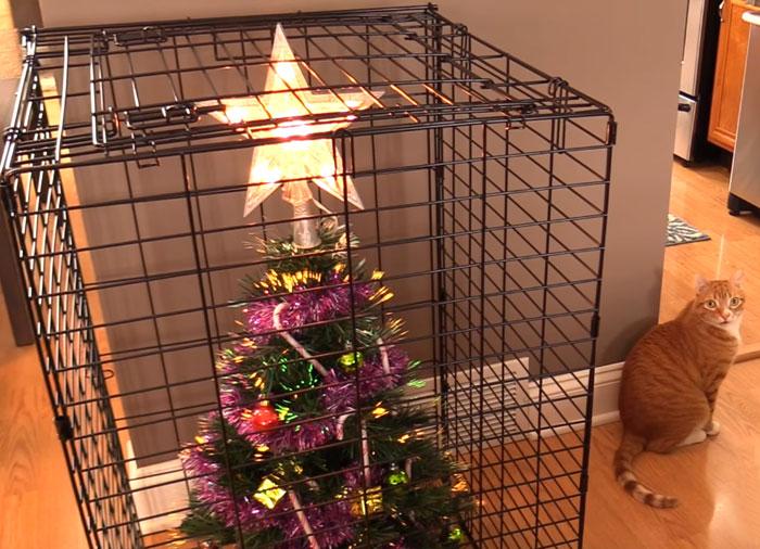 Aj vy musíte chrániť vianočný stromček pred domácimi miláčikmi? Tieto rodiny sa vynašli
