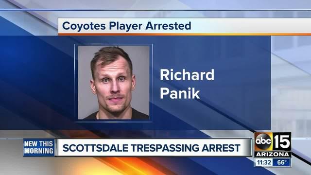 Opitého hokejistu Richarda Pánika uväznila v USA polícia