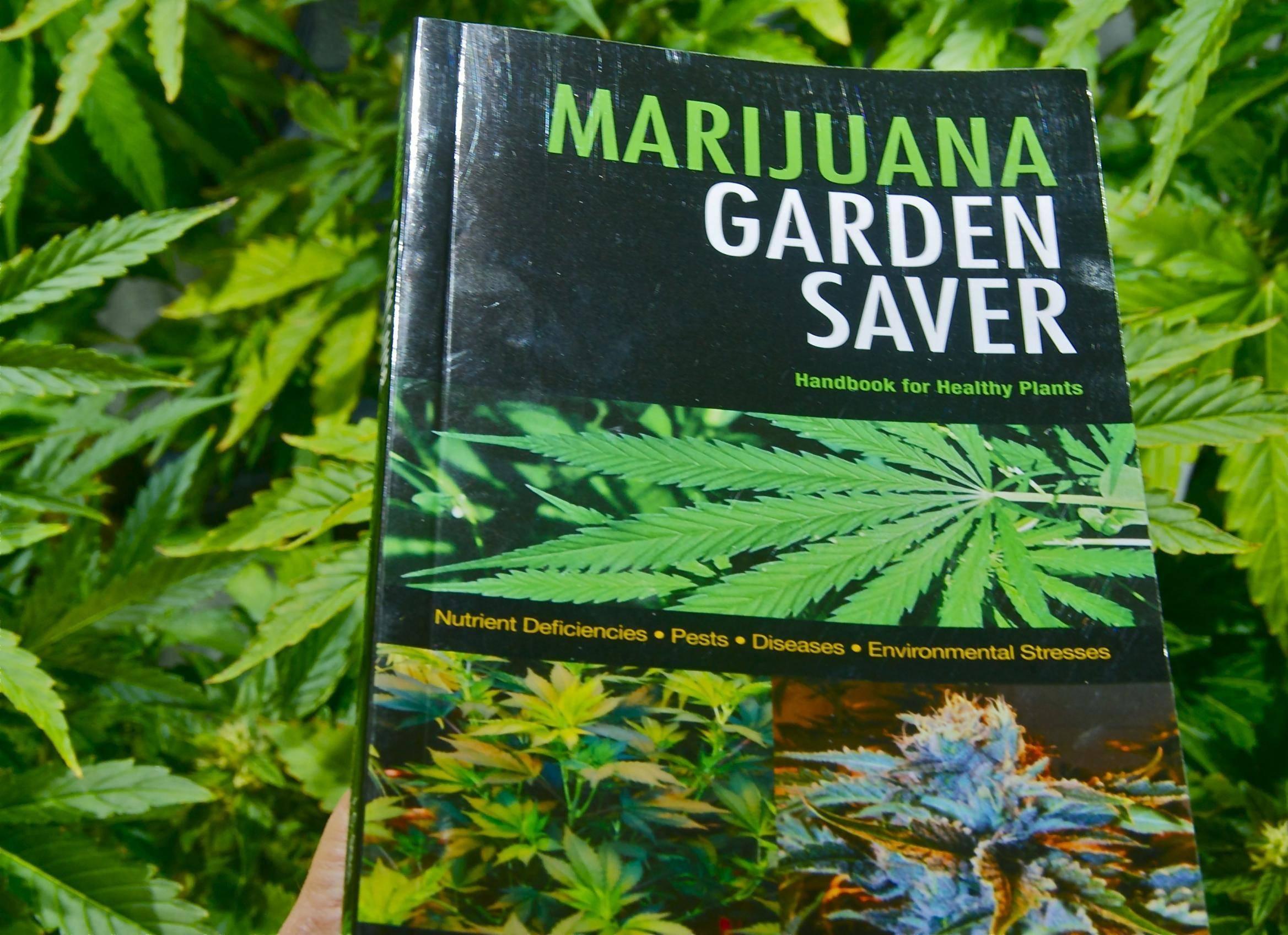 Muž pestoval na záhrade marihuanu, hrozí mu väzenie na 10 až 15 rokov